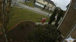 Video captures young girl in Maryland taking package from porch of home