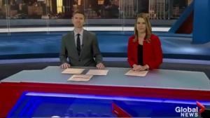 Global News Morning: Nov 13