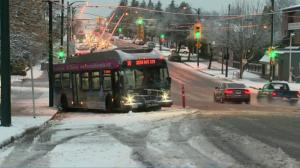 Metro Vancouver's first snowfall of the season brings commuter chaos