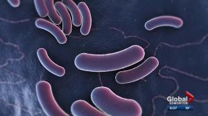 CFIA names 2 more businesses potentially connected to Alberta E. coli outbreak