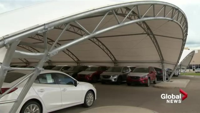 Calgary Car Dealership Spends 500 000 To Take Shelter