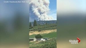 Amateur video captures wildfire burning near Kelowna, B.C.