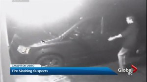 Police release surveillance video of tire slashing suspects