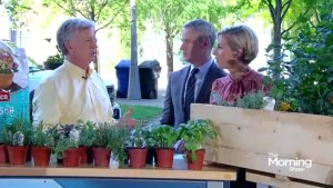Herb Gardening 101 with Mark Cullen