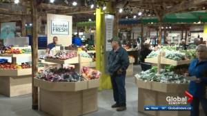 New Bountiful Farmers' Market opens in Edmonton with 100+ vendors