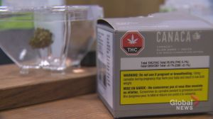 Sask. cannabis prices among the highest in the country