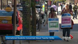 College teachers strike causes uncertainty amongst international students (01:46)