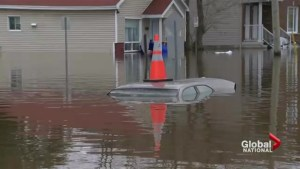 Woman surveys Quebec flood damage