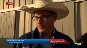 Chuckwagons and the Calgary Stampede