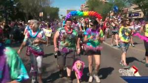 Edmonton Pride Parade winds through Old Strathcona