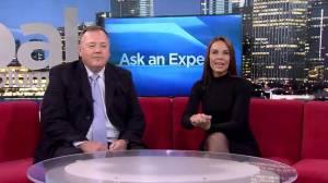 Ask an Expert: Veterinarian