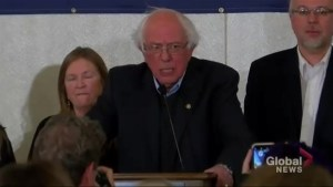 Midterms Elections: Bernie Sanders gives victory speech, calls the night a 'pivotal moment'