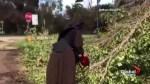 Chainsaw wielding nun speaks out