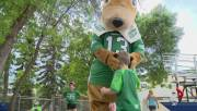 Play video: Shades of green and white at Riders' fan day
