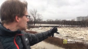 Ice jams and flooding along Grand River in Brantford, Ont. causing major problems