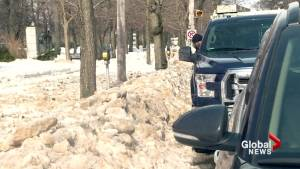 Halifax councillor says city should do better with snow-clearing