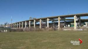 Business community comes out in favour of Gardiner hybrid option