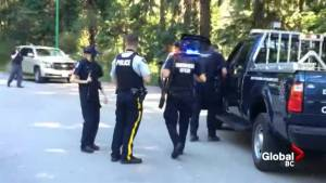 North Vancouver bear search
