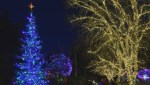 5 things to do this weekend – Friday Dec 22, 2017