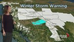 BC Evening Weather Forecast: Jan 31