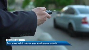 Pandemic of auto theft: Toronto police