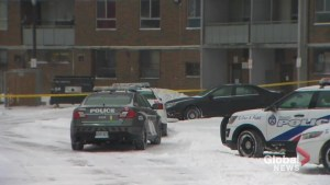 Homicide investigating after man shot in east-end Toronto