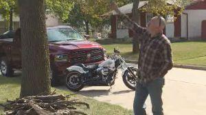 Winnipeg man upset over timeline given to prune problem tree
