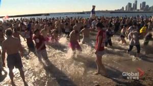 Hundreds take the icy plunge in Toronto Polar Bear Dip