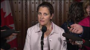 Freeland says Canada will support Pussy Riot member in whate
