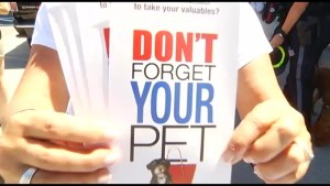 No Hot Pets campaign  launched in Peterborough by OPP and Humane Society