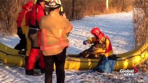 Deer rescued by Châteauguay firefighters (00:59)