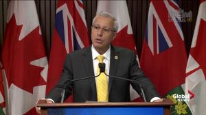 Fedeli's top priority is to protect party's IT systems ahead of election