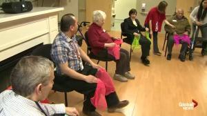 Healthy Living Report: Promoting Successful Aging