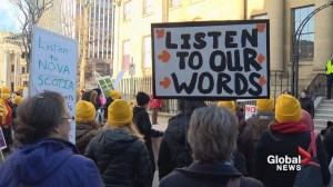 Protesters rally outside Province House as spring sitting begins