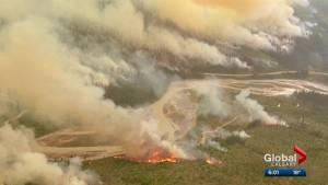Fires a factor in bison's death: Banff officials