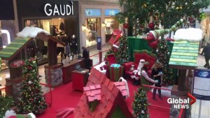 Shopping mall Santa turns into a Grinch
