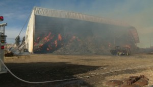 Flames rip through barn in southern Alberta, burn 1,000 tons of hay