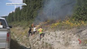 Good Samaritans help put out fire on side of Trans Canada Highway