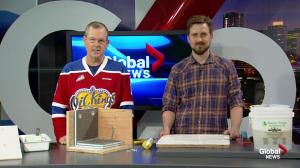 Edmonton's 'Tile Guy' shares tips of the trade