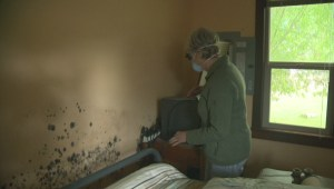 Grand Forks residents fight growing mould problem