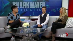 The legacy of Sharkwater director Rob Stewart