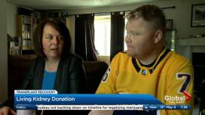 Living kidney donation (01:59)