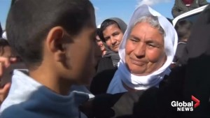 Yazidis, freed from IS, reunite with relatives in Iraq