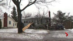 Messy storm wreaks havoc on Atlantic Canada