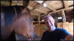 Mane Intent Human Horse therapy business marks its 5th Anniversary