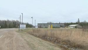Four asylum seekers illegally cross border near Piney, Manitoba: Officials