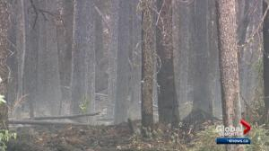 Fire crews battle out-of-control wildfire near Hinton