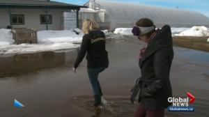 Flooding a concern in Sturgeon County