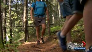 Safety tips for hiking with children