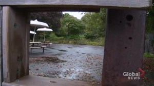 Former Bowmanville Zoo to become public park